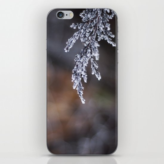 Frosted Juniper iPhone & iPod Skin