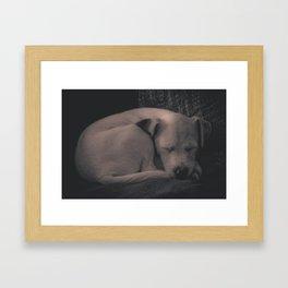 Jessie D. Framed Art Print