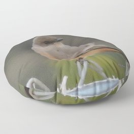 Say's Phoebe at Dusk Floor Pillow