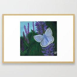 Endangered Mission Blue Butterfly Framed Art Print