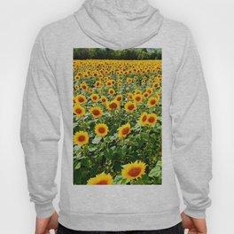 Field of Sunny Flowers Hoody