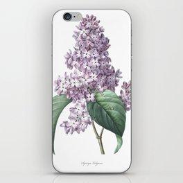 Nature, botanical print, flower poster art of Lilac iPhone Skin