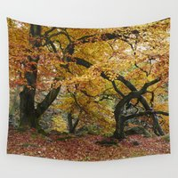 uk Wall Tapestries featuring Autumnal woodland. Padley Gorge, Derbyshire, UK. by liamgrantfoto