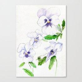 Snow Whites Canvas Print