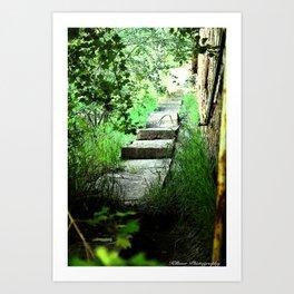 Stairway to Nowhere Art Print