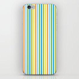 Colourful Pinstripes iPhone Skin