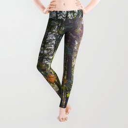 Sunlight in Autumn Forest Leggings