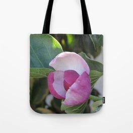 A Fig Prefigured Tote Bag
