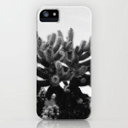 Cholla Cactus Garden XI iPhone Case