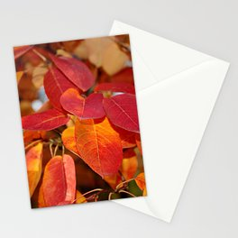 Autumn Glory - Juneberry leaves, Amelanchier Stationery Cards