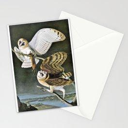 12,000pixel-500dpi - Barn Owl - John James Audubon Stationery Cards