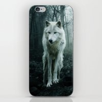 wolf iPhone & iPod Skins featuring Wolf by Julie Hoddinott