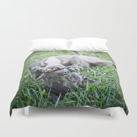pit bull Duvet Covers featuring Pit Bull Puppy by Paw Prints By Jamie