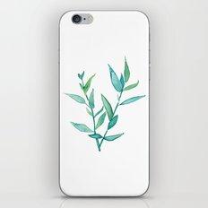 Bamboo Leaves iPhone & iPod Skin