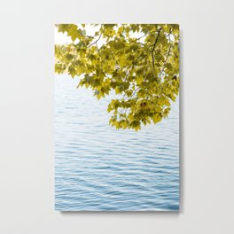 Relaxing time by the lake Metal Print