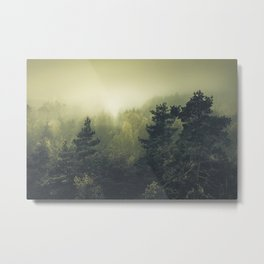 Forests never sleep Metal Print