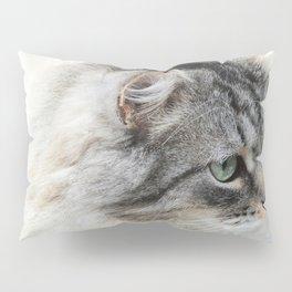 Silver Cat Pillow Sham