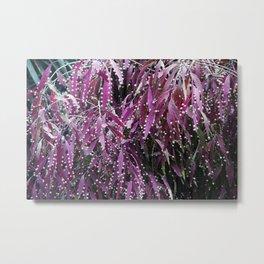 Longwood Gardens Autumn Series 256 Metal Print