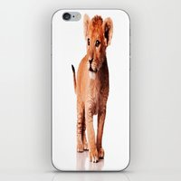 the little prince iPhone & iPod Skins featuring little prince by arnedayan