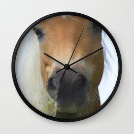 horse in the farm Wall Clock