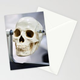 Human skull model in clamps for education Stationery Cards