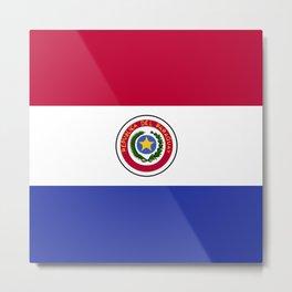 Paraguay flag emblem Metal Print