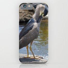 Herron iPhone Case