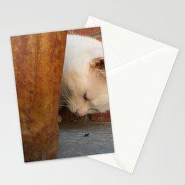 Artemis Explores 3 Stationery Cards