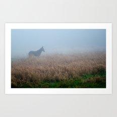 mule. Art Print
