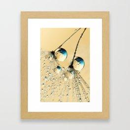 Duo Shower Dandy Drops Framed Art Print