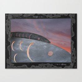 metal fish Canvas Print