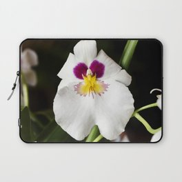 Pansy Orchid Laptop Sleeve