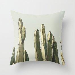 Desert Cactus 2 Throw Pillow
