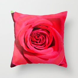 Classic Rose: Color Version Throw Pillow