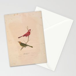 JP Giroud - North American birds (1841) - White Cheeked Titmouse &  Bell's Flycatcher Stationery Cards