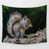 squirrel Wall Tapestries featuring Squirrel by Fine Art by Rina