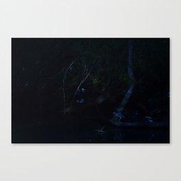 Bird in Moonlight Canvas Print