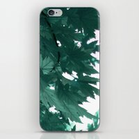 turquoise iPhone & iPod Skins featuring turquoise by Françoise Reina