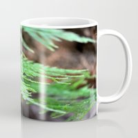 fern Mugs featuring fern by  Agostino Lo Coco