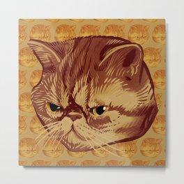 Fitzroy the Cat Metal Print