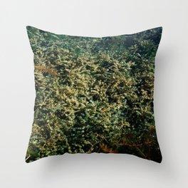 pond garden Throw Pillow