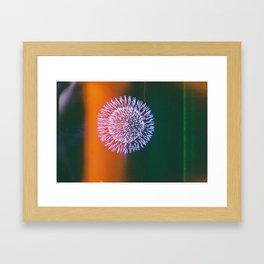 Omagari fireworks Framed Art Print