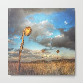 Field of lost Souls - Withered Sunflowers Metal Print