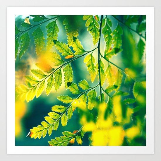 Memories in the Leaves Art Print