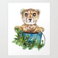 cheetah Art Prints featuring cheetah by Anna Shell