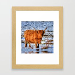 Hamish the Scottish Highland Bull in Winter Snow Framed Art Print