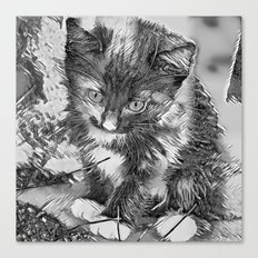 AnimalArtBW_Cat_20170902_by_JAMColorsSpecial Canvas Print