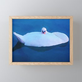 Swiss Swan Framed Mini Art Print