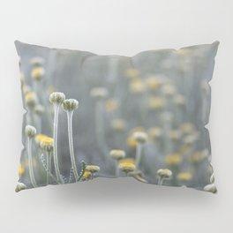 Pop-Ups Pillow Sham