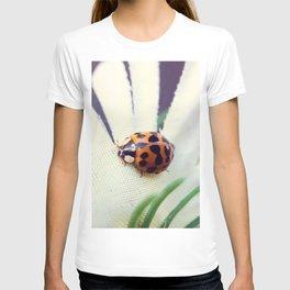 Ladybug On Flower T-shirt
